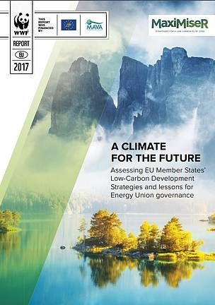 A climate for the future: assessing EU Member States' low-carbon development strategies and lessons for Energy Union governance