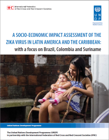 A socio-economic impact assessment of the Zika Virus in Latin America and the Caribbean: with a focus on Brazil, Colombia and Suriname