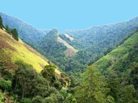 Save Arunachal environment: Ering