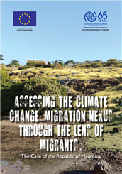 Assessing the climate change–migration nexus through the lens of migrants: the case of the Republic of Mauritius
