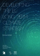 Developing the EU long term climate strategy