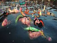 Idol immersion a concern for environmental experts