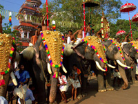 Laws may be Framed in Support of Jumbo Parade