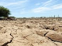 El Nino leaves North MP, Bundelkhand dry