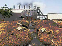 Untreated effluents: Pollution board seeks report from MC