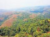 Environment Ministry notifies draft rules of Compensatory Afforestation Act