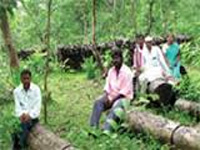 Forest rights must be settled in urban areas