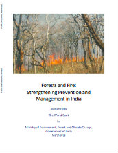 Forests and fire: strengthening prevention and management in India