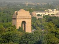 Delhi can become a desert if green cover goes: HC