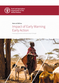 Horn of Africa: impact of early warning early action - protecting pastoralist livelihoods ahead of drought