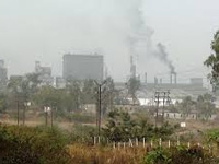 NGT seeks report on effects of expansion of Mandideep industrial area on Bhimbetka