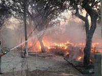 Jawahar Bagh clashes: NGT seeks UP govt response on green cover loss