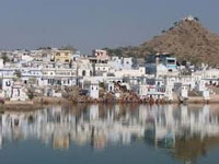 Shrinking Pushkar Lake water takes a toll on fishes