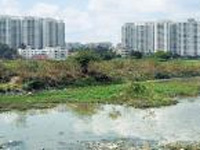 Mantri submits report to green tribunal in Bellandur Lake case