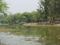 Sanjay Lake near Mayur Vihar to get new lease of life