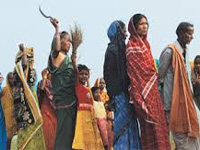 Tribals, activists burn copies of land acquisition Ordinance