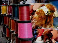 Now, Panna dist admn bans use of Chinese threads