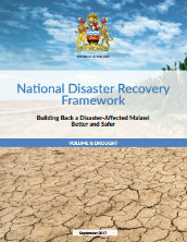 National disaster recovery framework: building back a disaster-affected Malawi better and safer