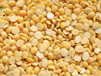 In Odisha, no dal for the dalma