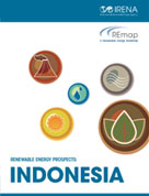 Renewable energy prospects: Indonesia