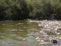 MPCB tests city's waters; Mithi river consistently most polluted