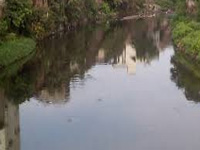 Continuing effluent discharge into River Noyyal worries farmers