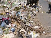 Waste awareness 'mascots': Many merely on paper