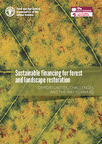 Sustainable financing for forest and landscape restoration: opportunities, challenges and the way forward