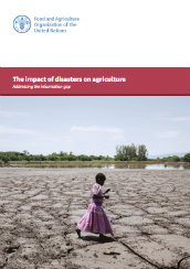 The impact of disasters on agriculture: addressing the information gap
