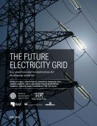 The future electricity grid: key questions and considerations for Developing Countries
