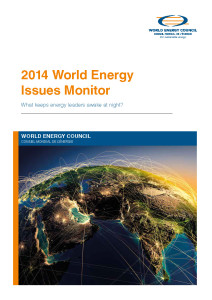World energy issues monitor 2014