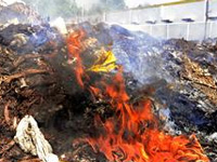 Civic employees found burning waste on roads