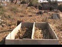 Civic body shows the way, makes 500 kg compost from flower waste