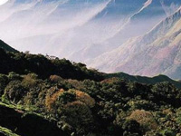 IISc Students Campaign for Western Ghats
