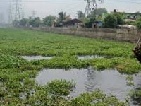 Waste dumping at wetland: NGT seeks reply from state