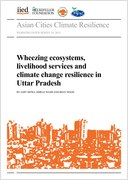 Wheezing ecosystems, livelihood services and climate change resilience in Uttar Pradesh