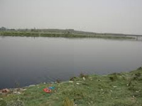DDA to plead with NGT for work in Yamuna zone