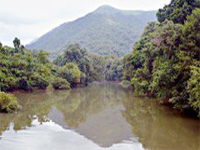 Yettinahole project taken up without studying environmental impact'