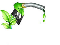 India should promote biofuel, public transport