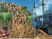 264.90 MW biomass power projects in State