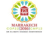 What Marrakesh achieved, what's ahead in climate change fight now