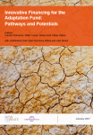 Innovative financing for the adaptation fund: pathways and potentials
