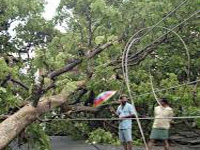 Deforestation hits monsoon rains, says study