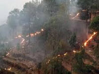 Forest fires continue to rage in U'khand, 1,213 ha gutted since beginning of season in Feb