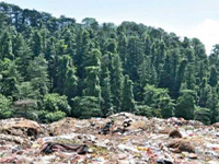 After years of dumping waste, corporation to now clear reserve forest