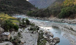 Assessment of cumulative impacts of hydroelectric projects on aquatic and terrestrial biodiversity in Alaknanda and Bhagirathi basins, Uttarakhand