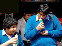 Punjab bans junk food at school
