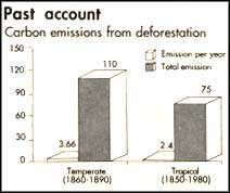 Western expansionism caused more carbon emission