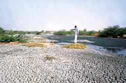 feasibility study of natural alkaline water Recent research has highlighted the potential for natural  the drainage water from the slag  a feasibility study of disinfection by-product precursor.