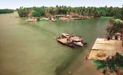 Periyar river`s pollution is Eloor`s bane